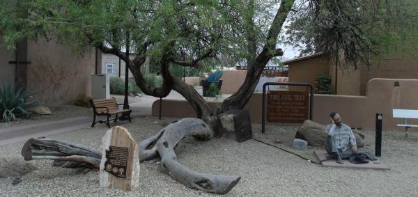تور آمریکا: درخت زندان در ویکنبرگ