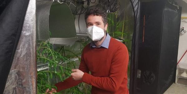 ربات هوش مصنوعی آفات کشاورزی را نابود می کند