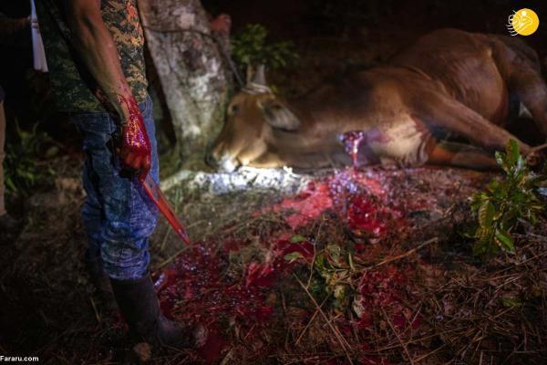 بازماندگان رانش زمین در گواتمالا