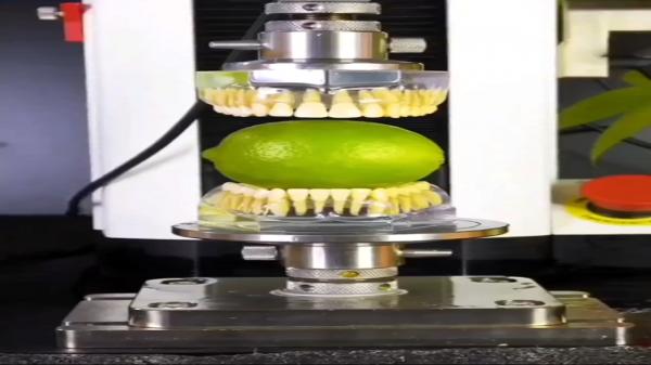 گاز زدن میوه ها می تواند چه بلایی بر سر دندان های شما بیاورد؟